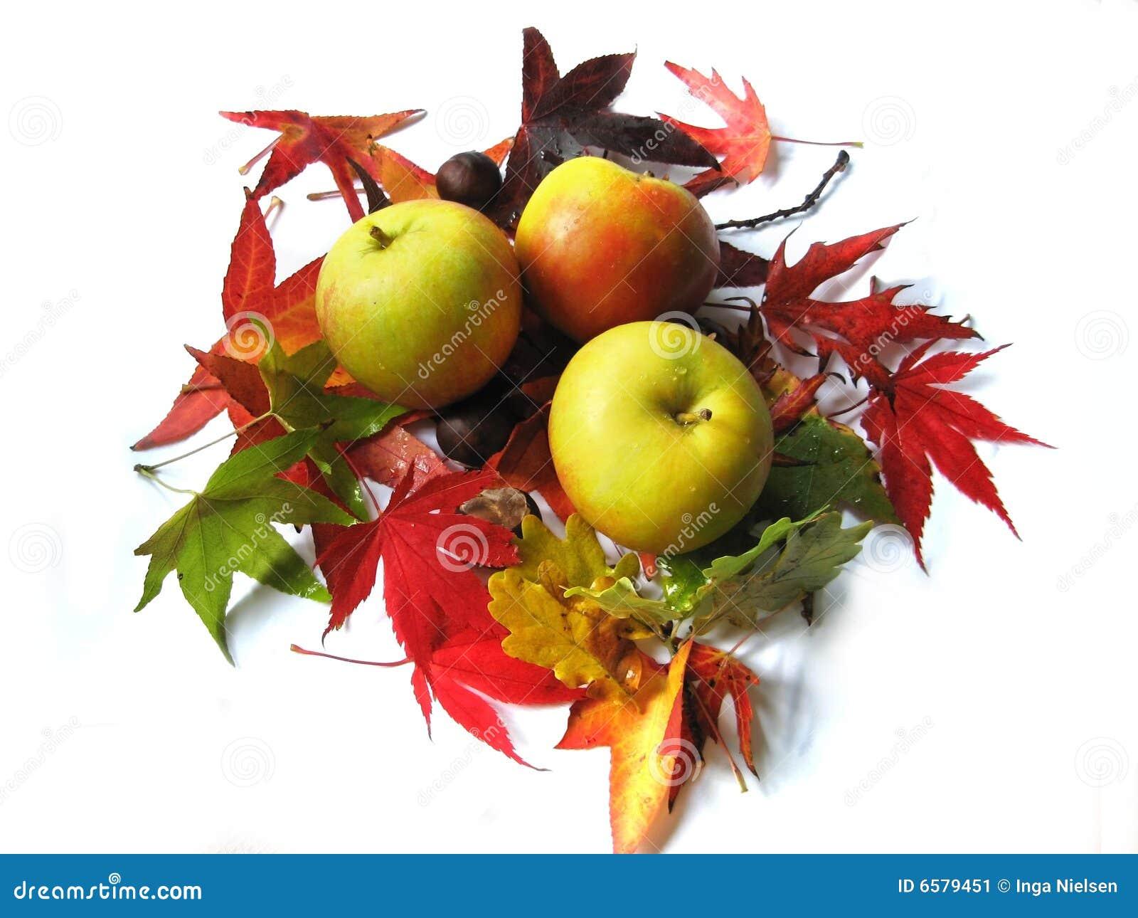 Appelen en de herfstbladeren