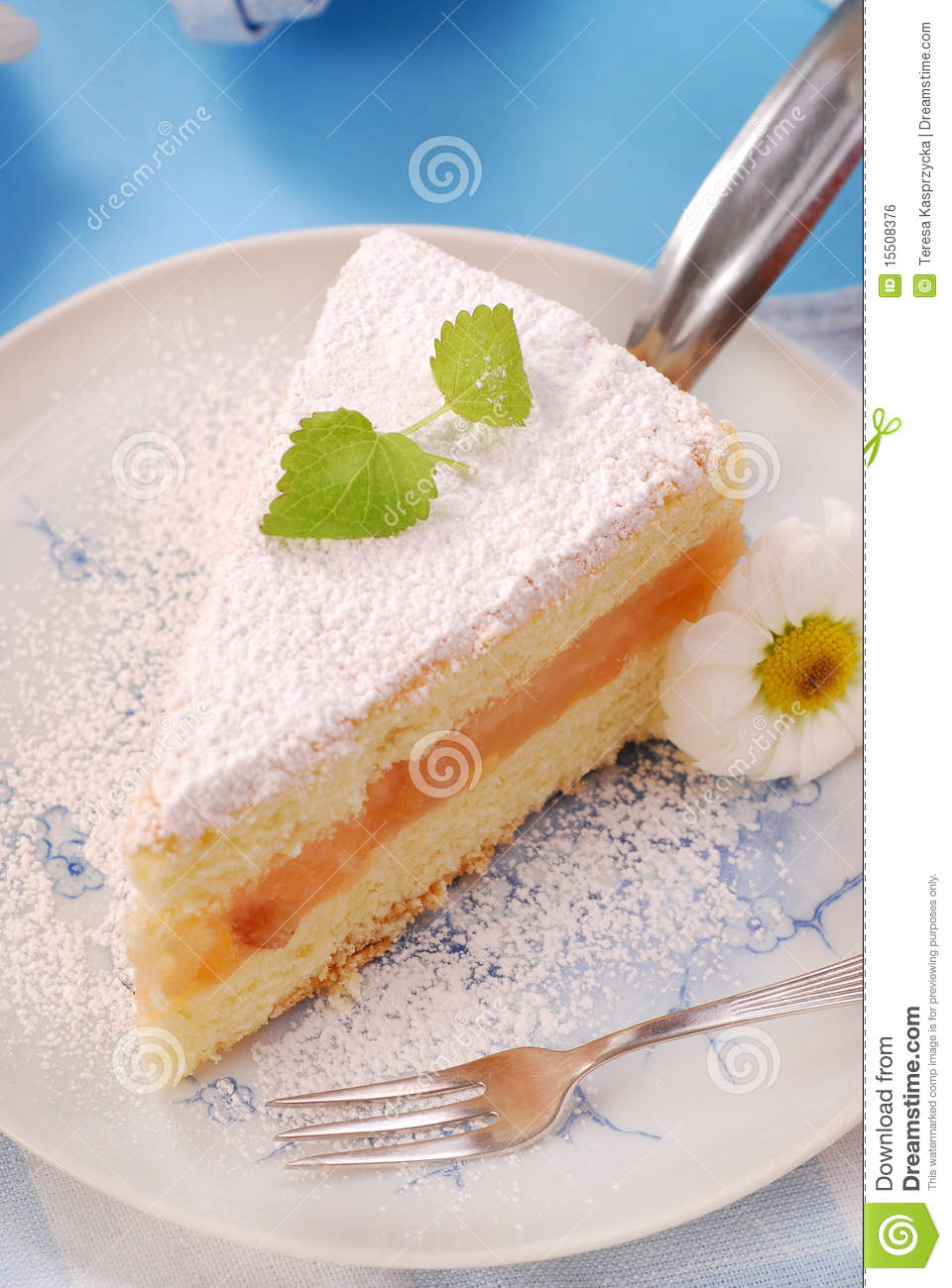 Cake With Icing Sugar : Apple Cake With Icing Sugar Royalty Free Stock Image ...