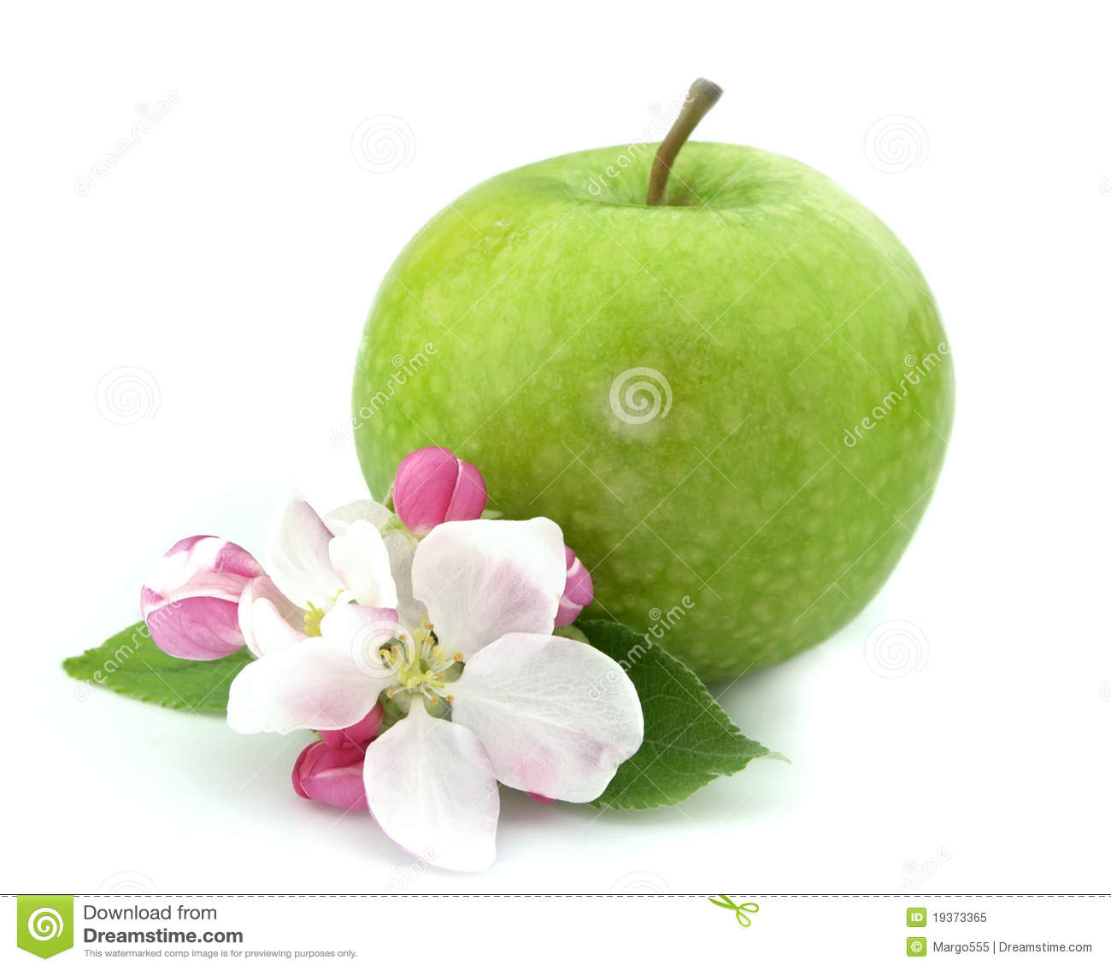 Apple com flor