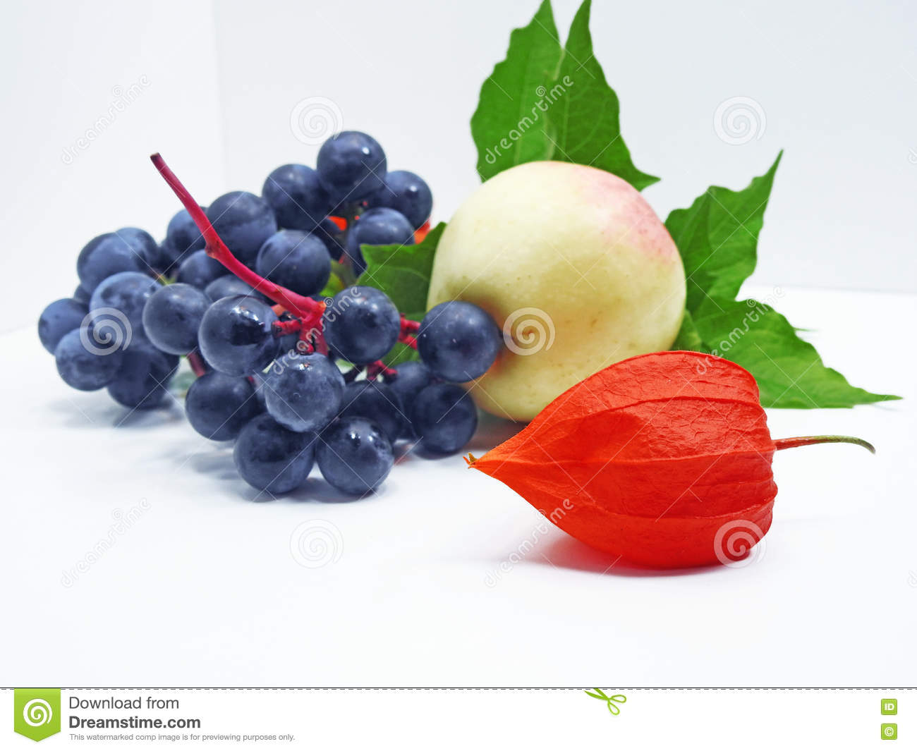 apple, concord black grapes and physalis flower stock photo - image
