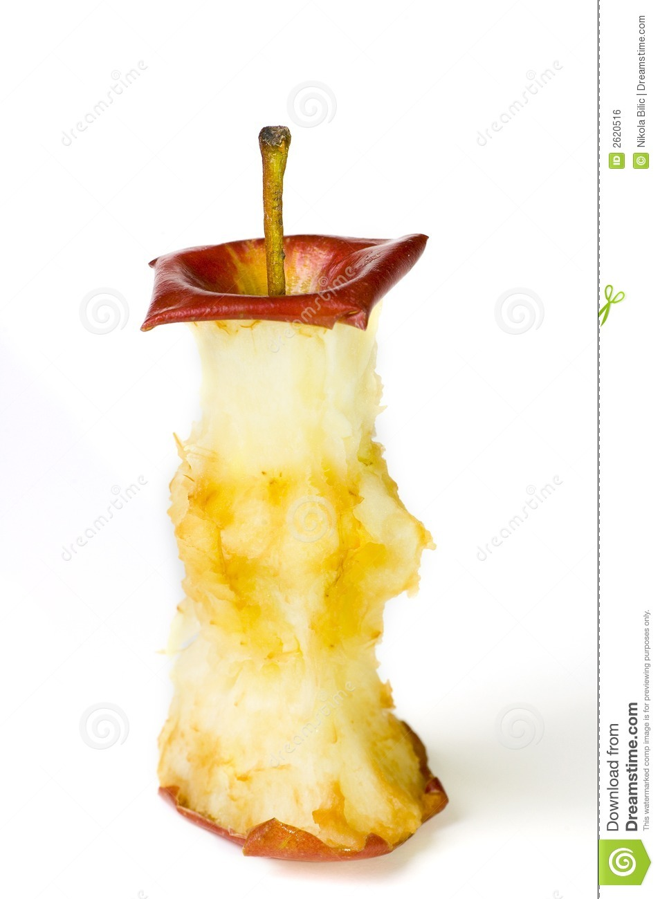Apple Core Royalty Free Stock Image - Image: 2620516