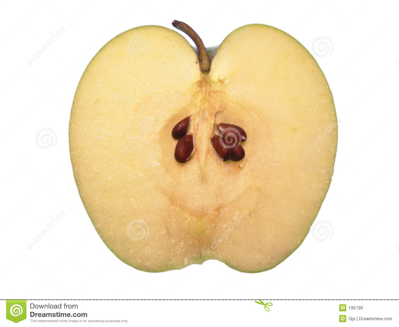 apple cut in half stock photo image 195790