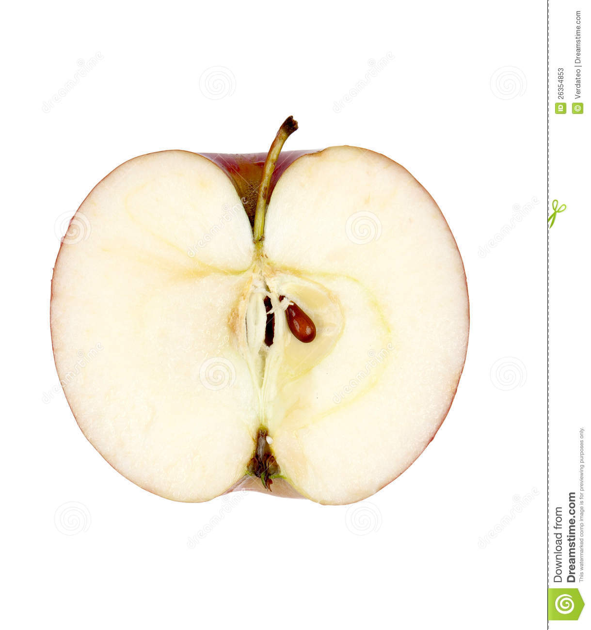 apple cut in half stock photos image 26354853