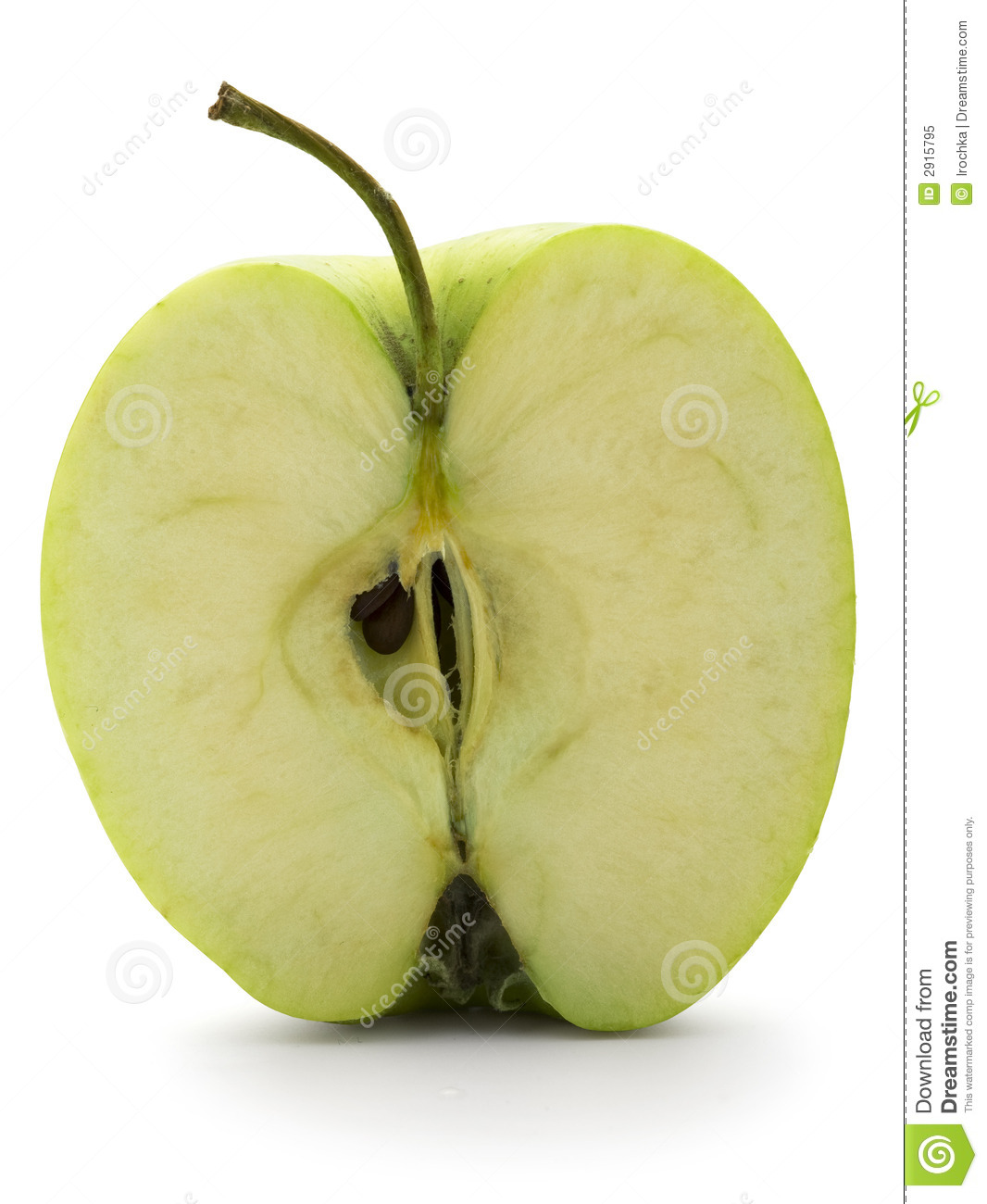 apple cut in half royalty free stock photo image 2915795