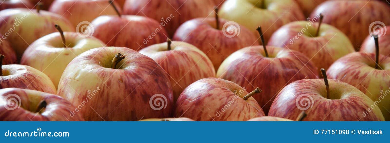 Apple donnent à la bannière une consistance rugueuse horizontale