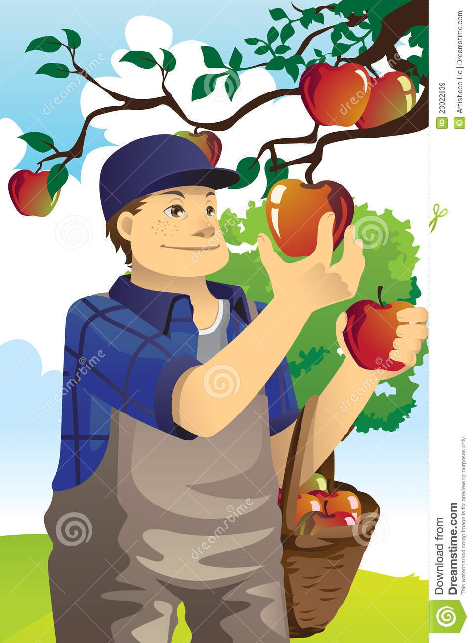 apple farmer royalty free stock images