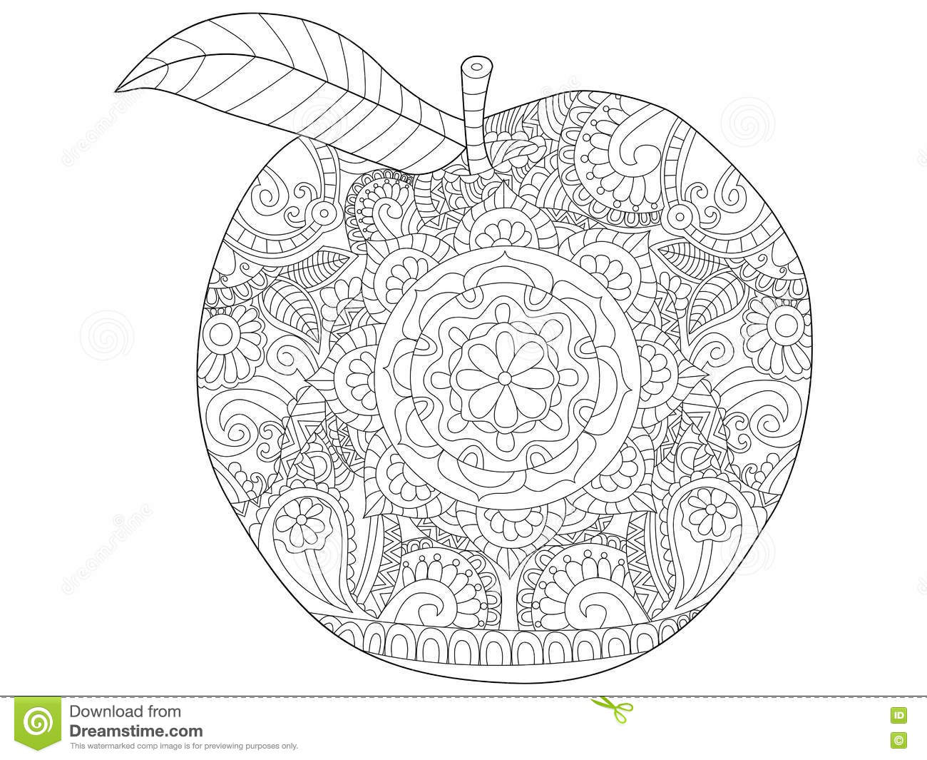 Apple fruit coloring vector for adults stock vector for Fruit coloring pages for adults