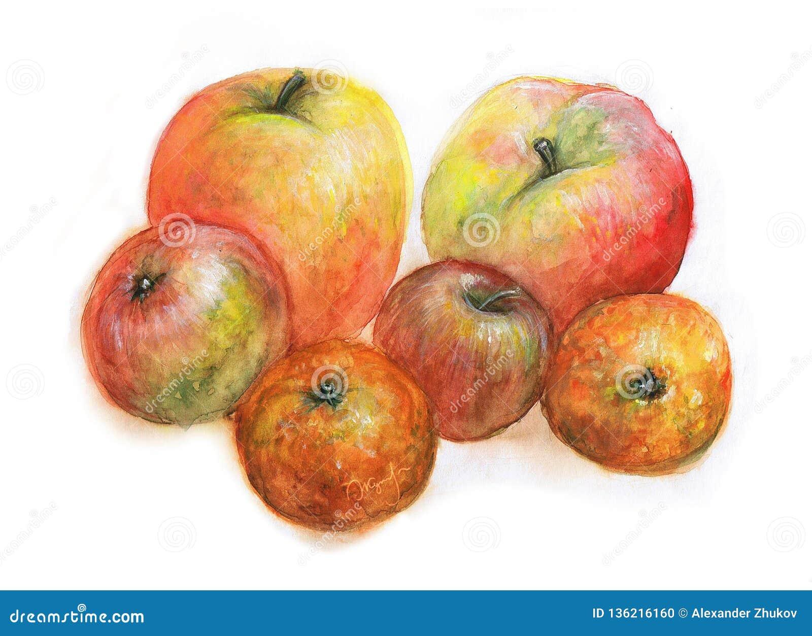 Apple-Garten Aquarellillustration