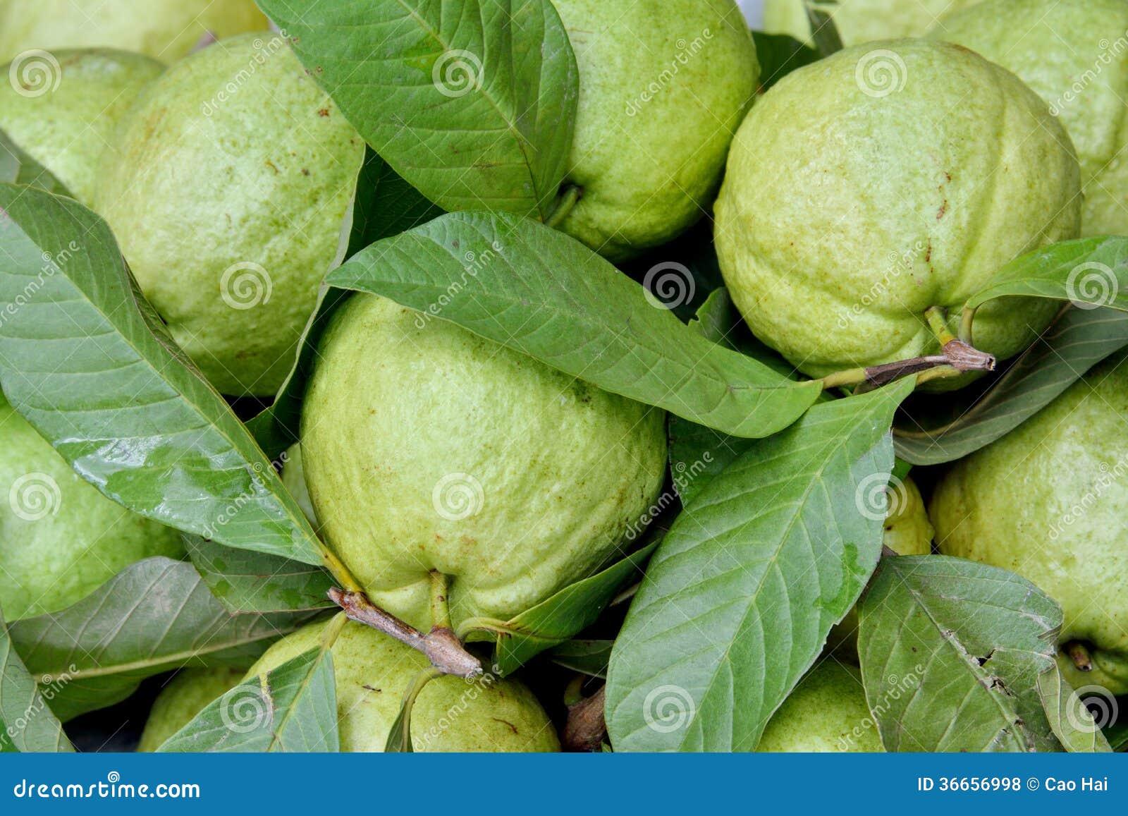 Apple Guava Fruit Roya...