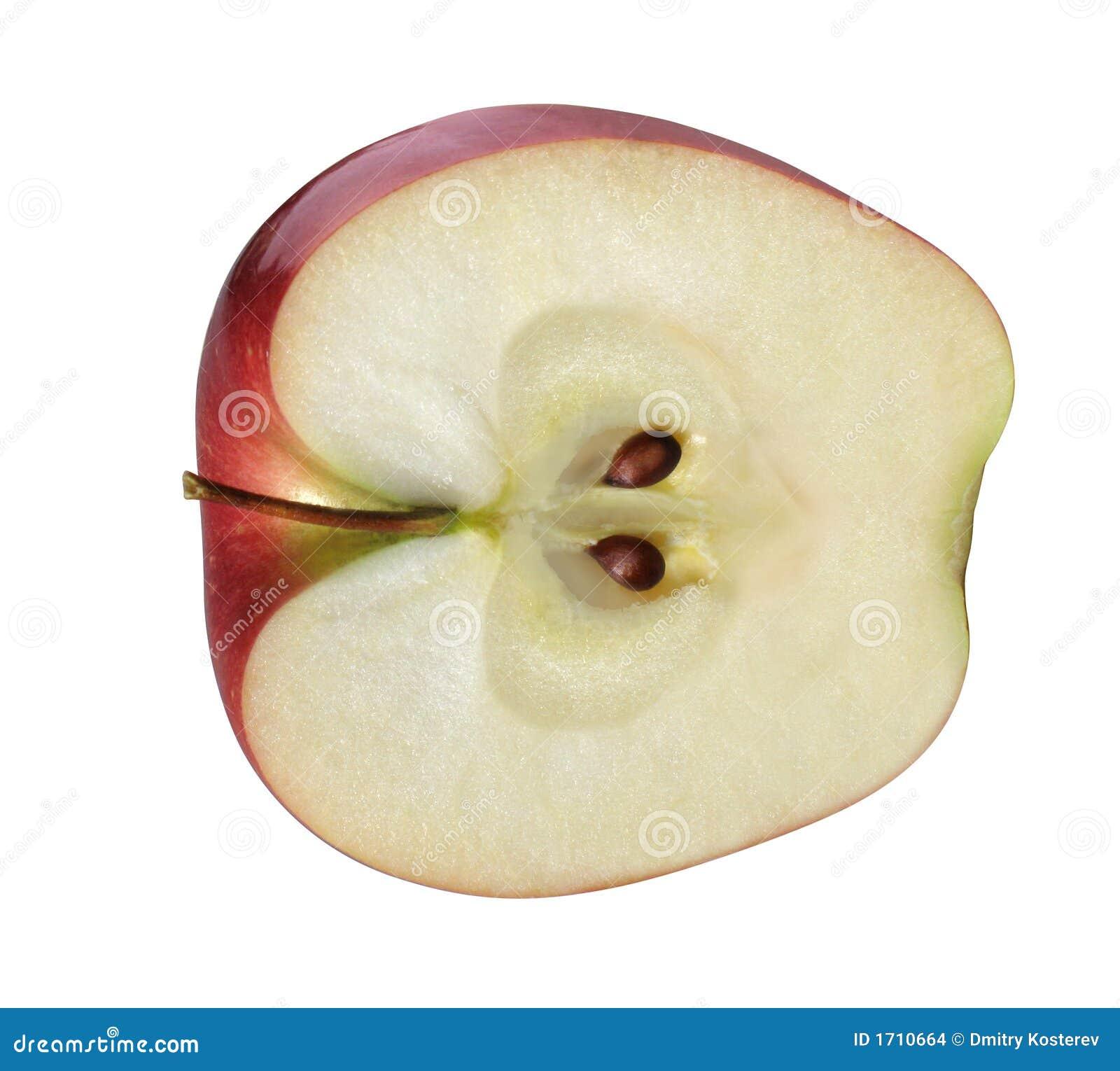 Http Www Dreamstime Com Stock Images Apple Half Image1710664