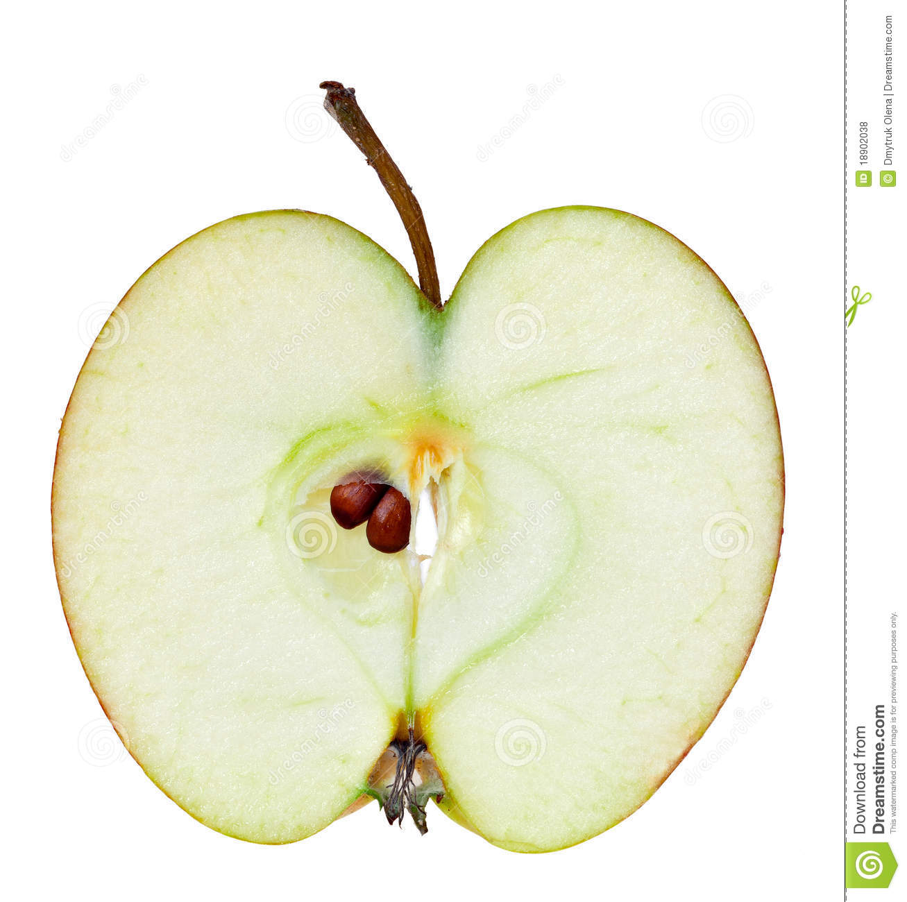Apple Half Royalty Free Stock Photos - Image: 18902038