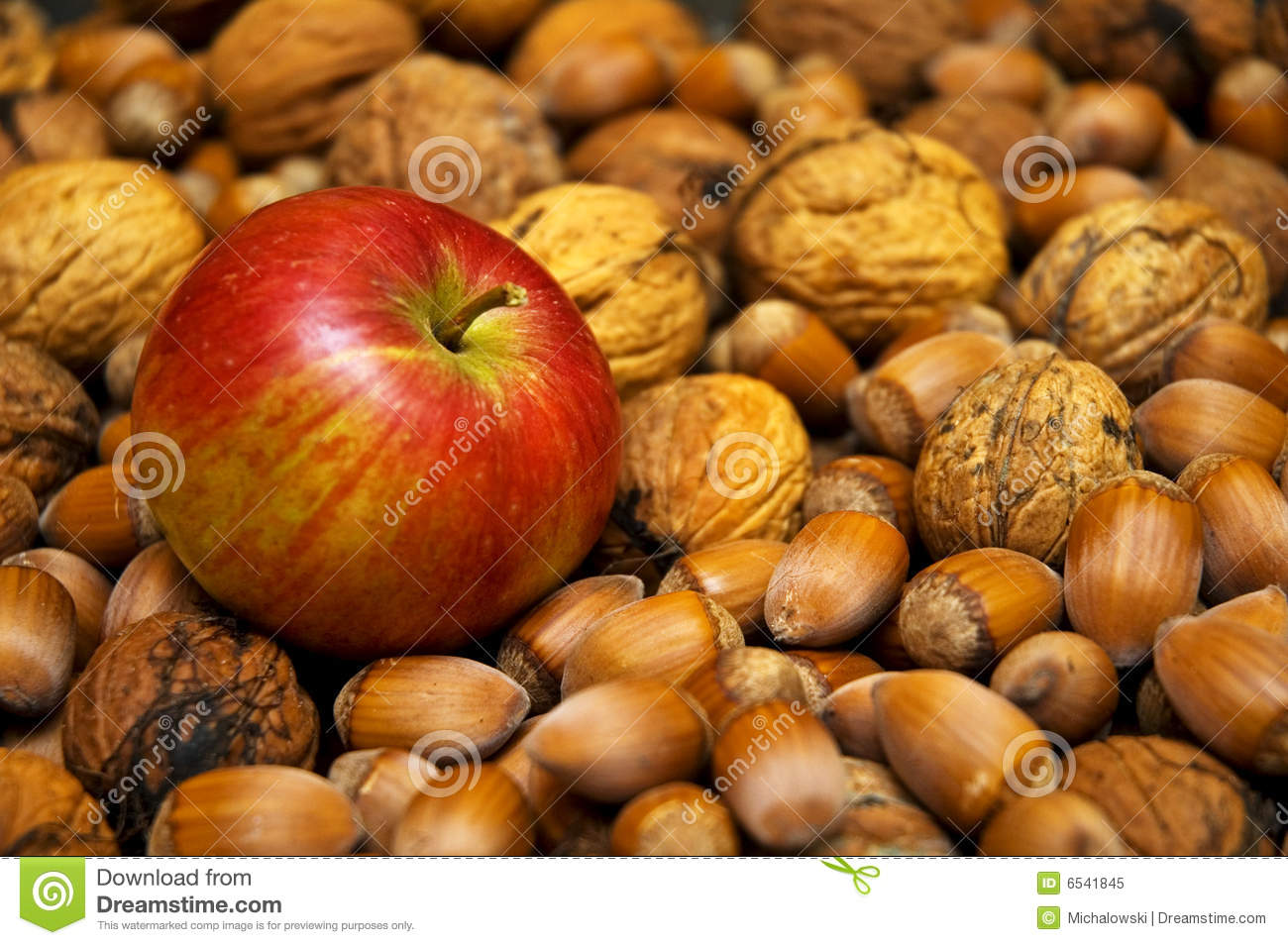 6f13f7c55b6e Apple and nuts stock image. Image of nature
