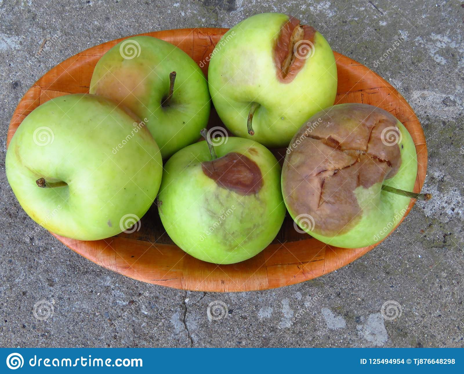 Apple Fruit Diseases