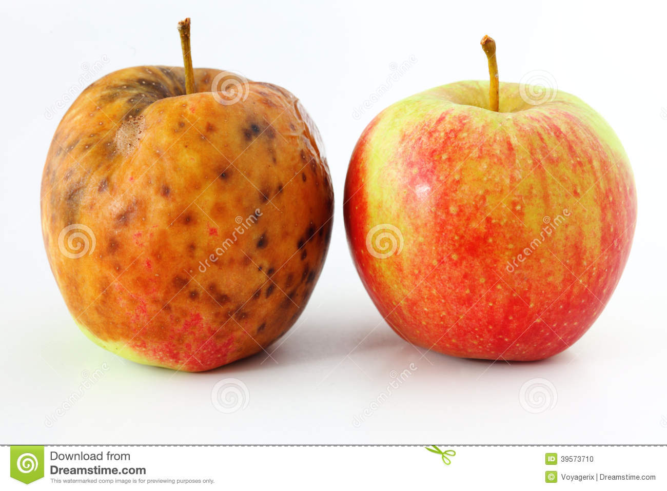 apple-spoiled-white-background-healthy-r