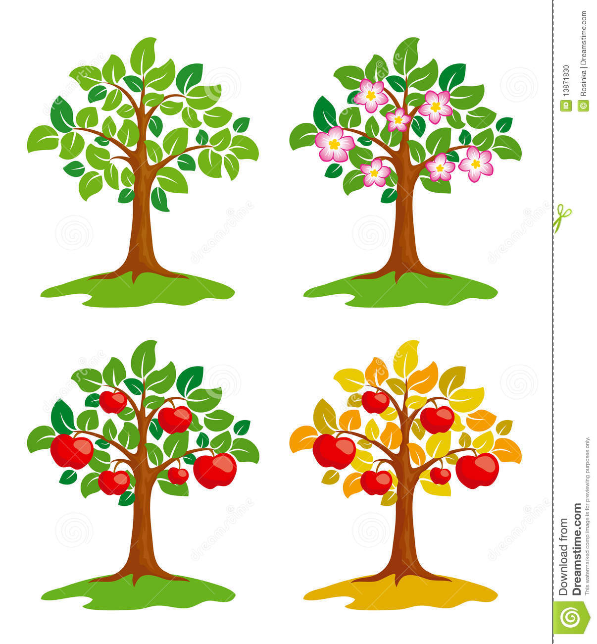 Stock Photo Apple Tree Different Seasons Image13871830 on Family Tree For Kids Template