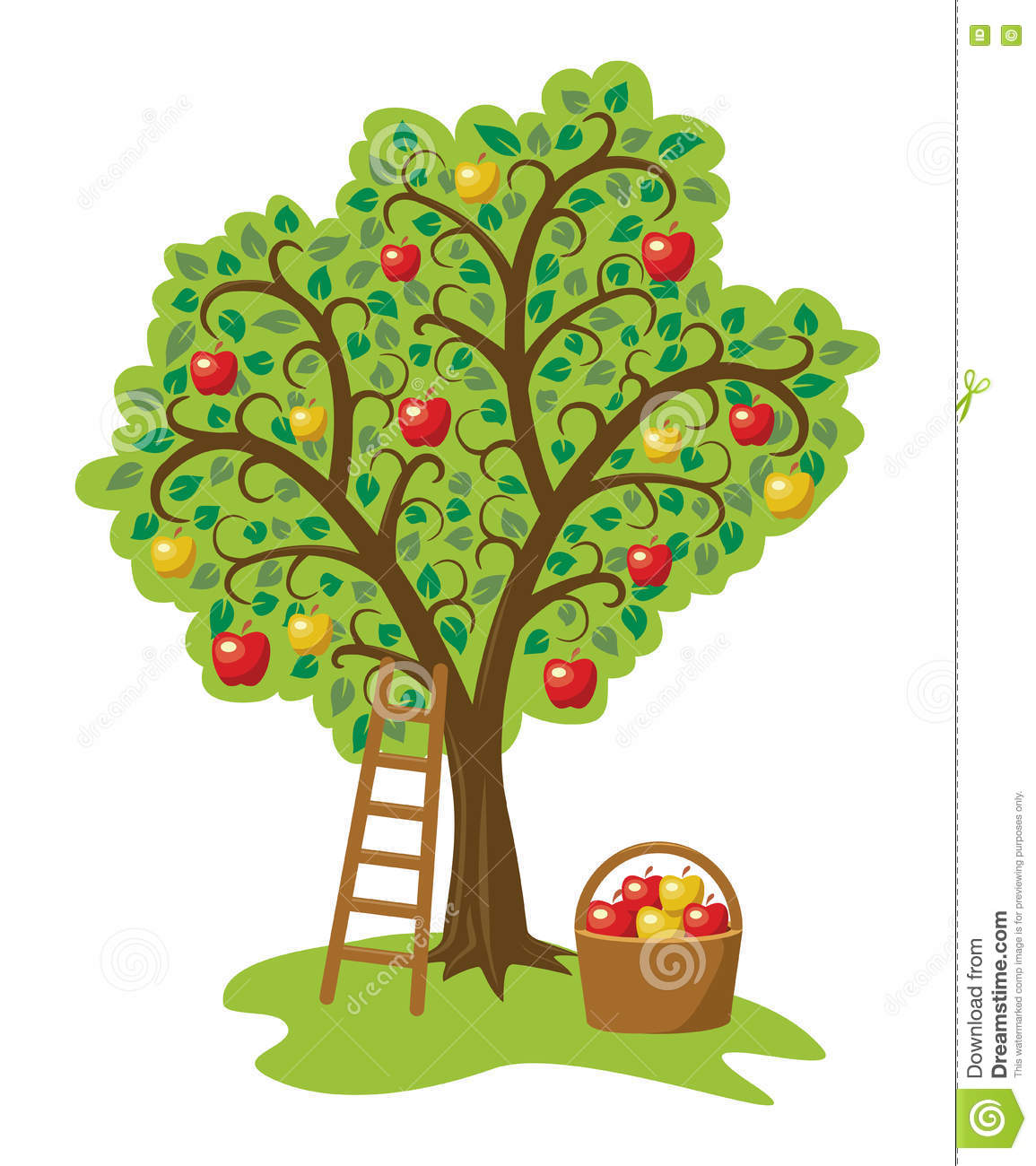 Apple Tree With Fruits, Basket And Ladder, Vector Stock Vector ...