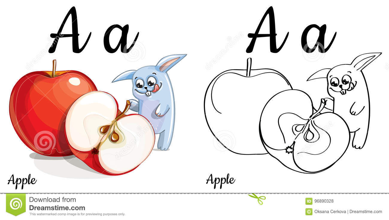 Apple Vector Alphabet Letter A Coloring Page Stock Illustration Illustration Of Isolated Page 96890328