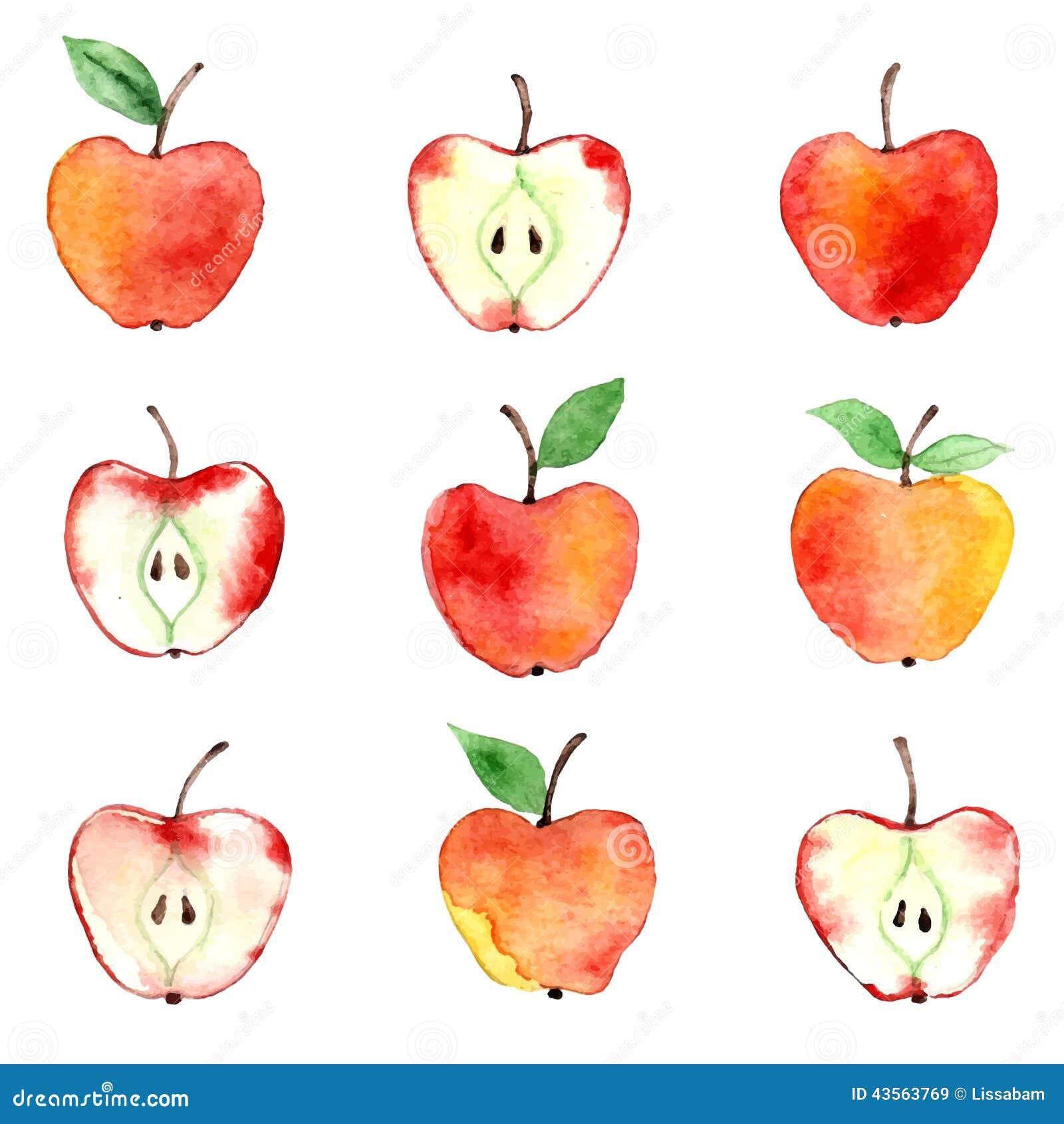 Apple watercolor pattern stock vector. Illustration of ... (1300 x 1390 Pixel)