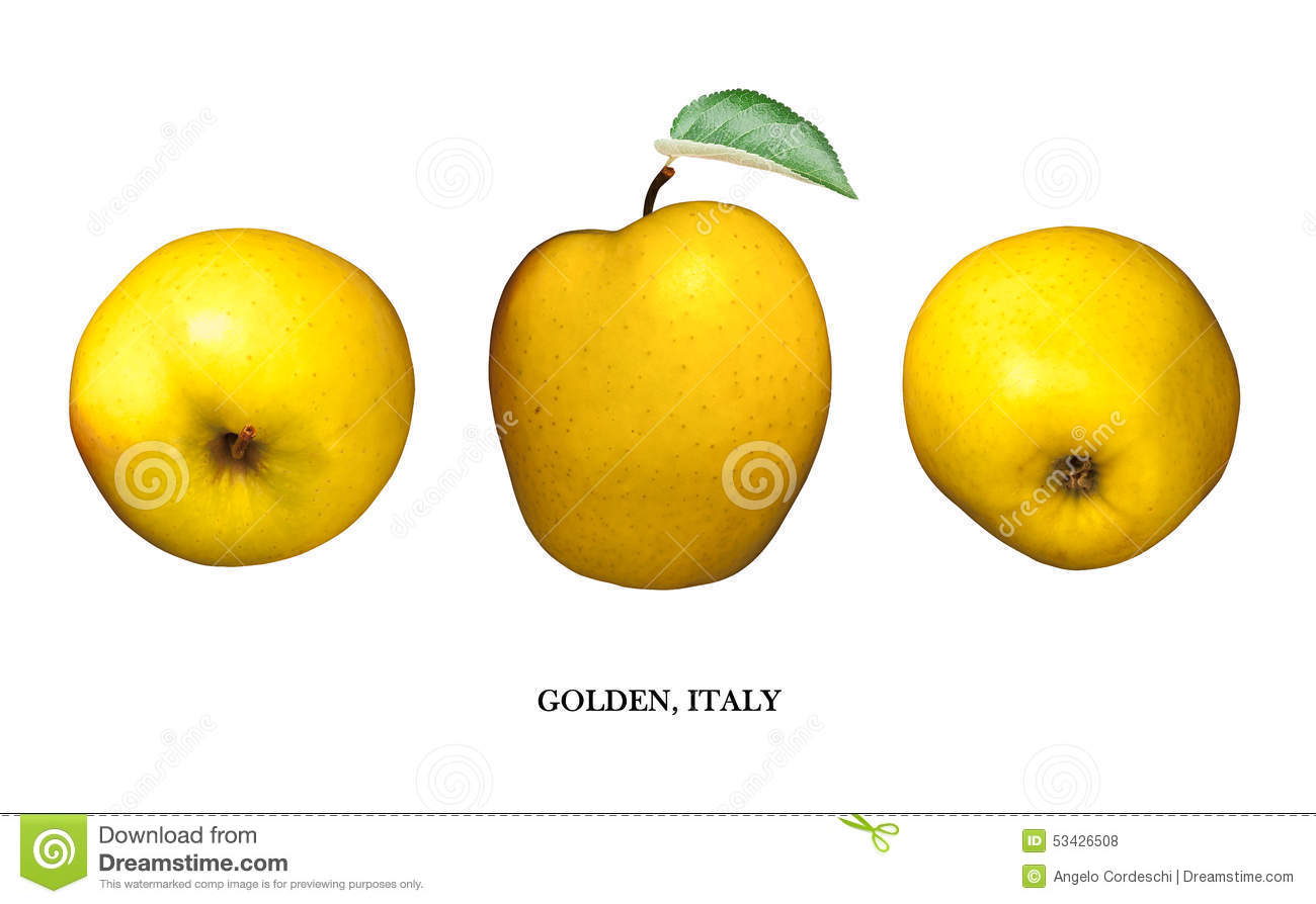 Apple Yellow Golden, Italy Isolated On White. Three Points Of View ...