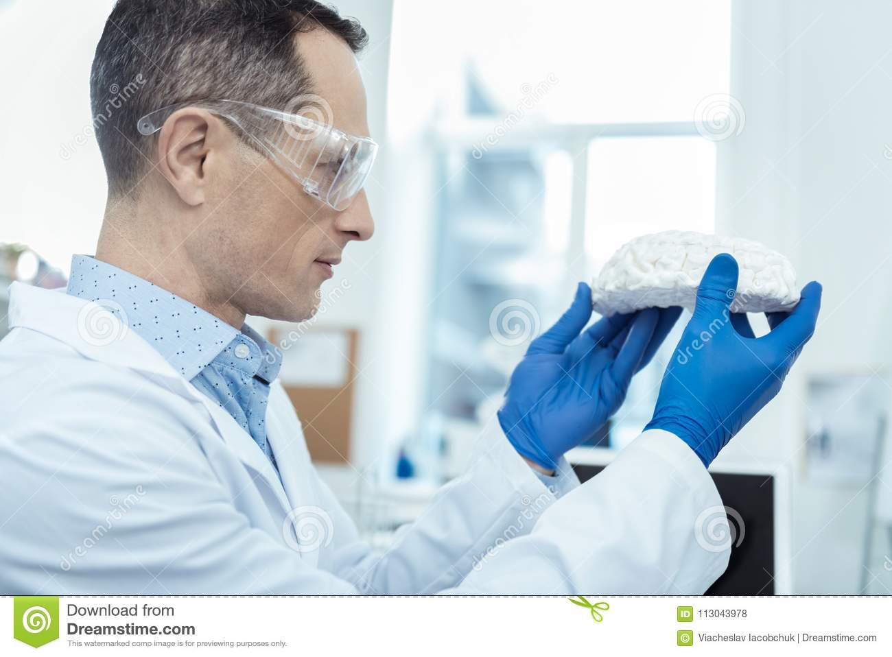 Professional researcher holding a model of brain