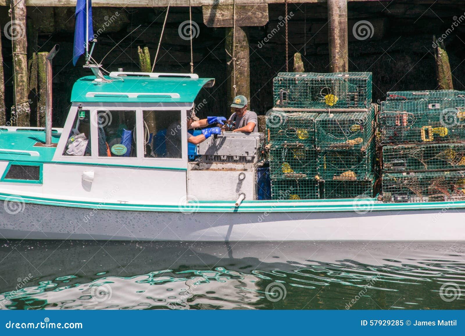 Apport à la maison des homards