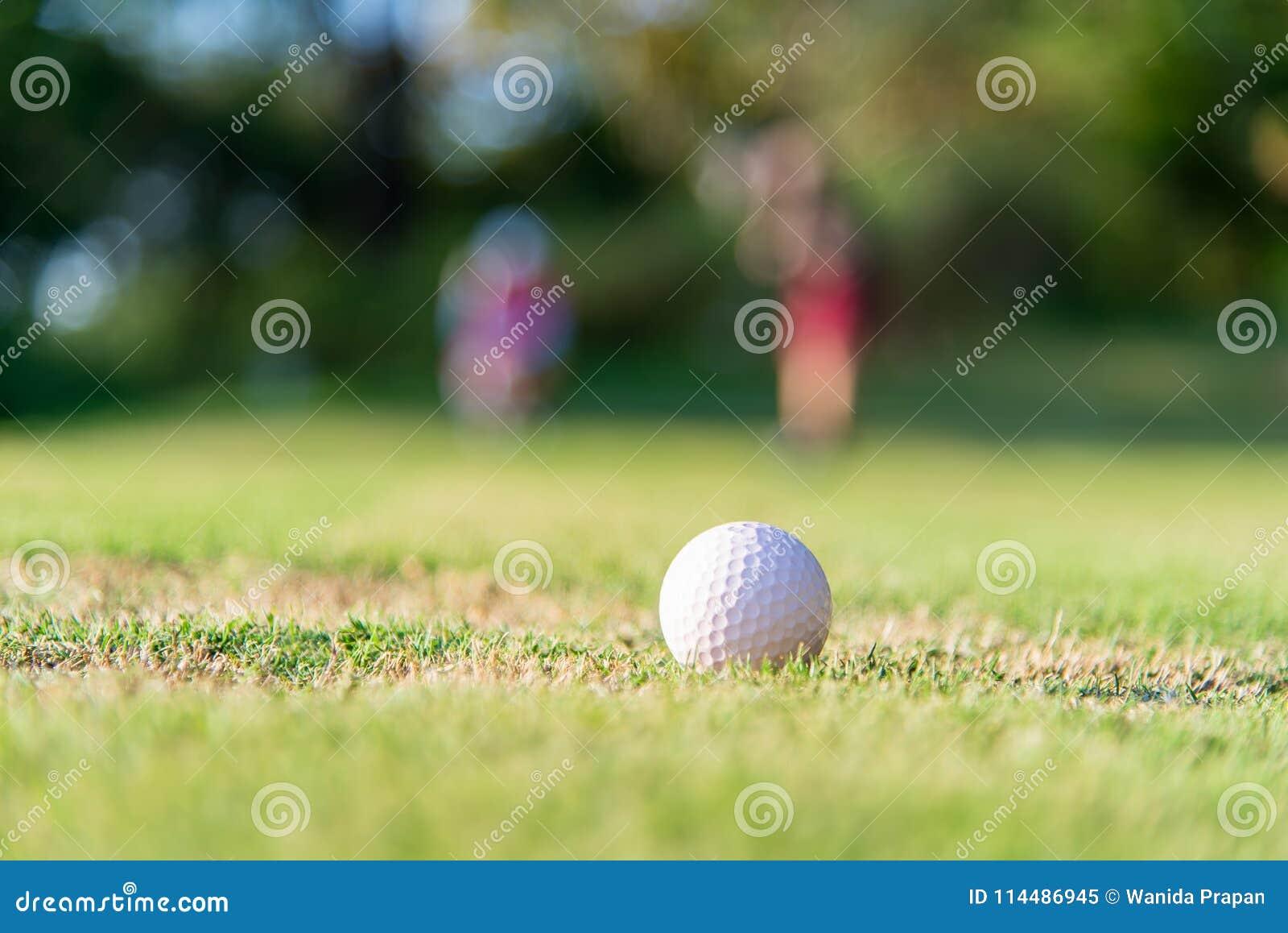 Approche de boule de golf à la prise sur le vert Couplez la boule de golf ptiching de joueur de golf à l arrière-plan