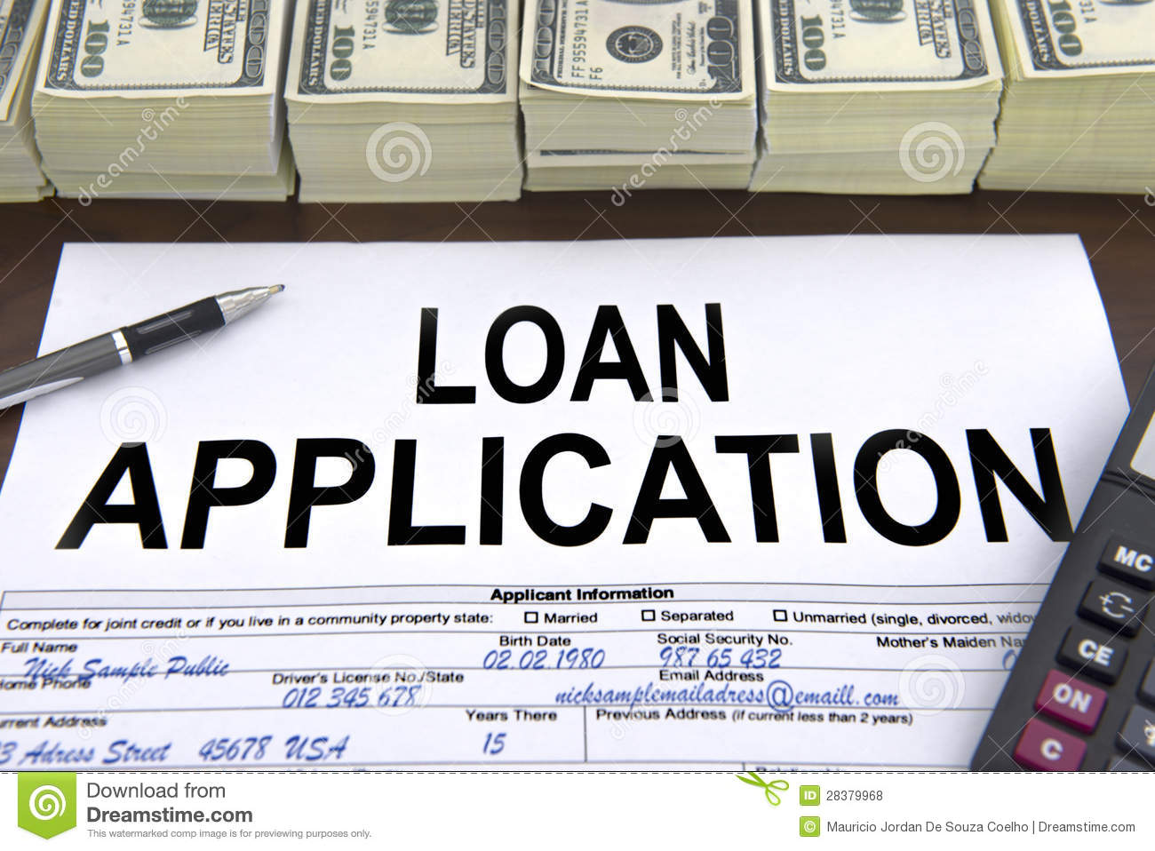 government loan:
