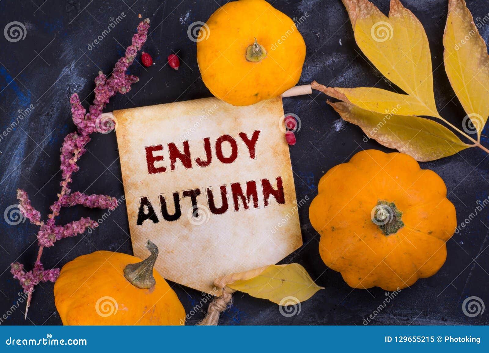 Aprecie o outono