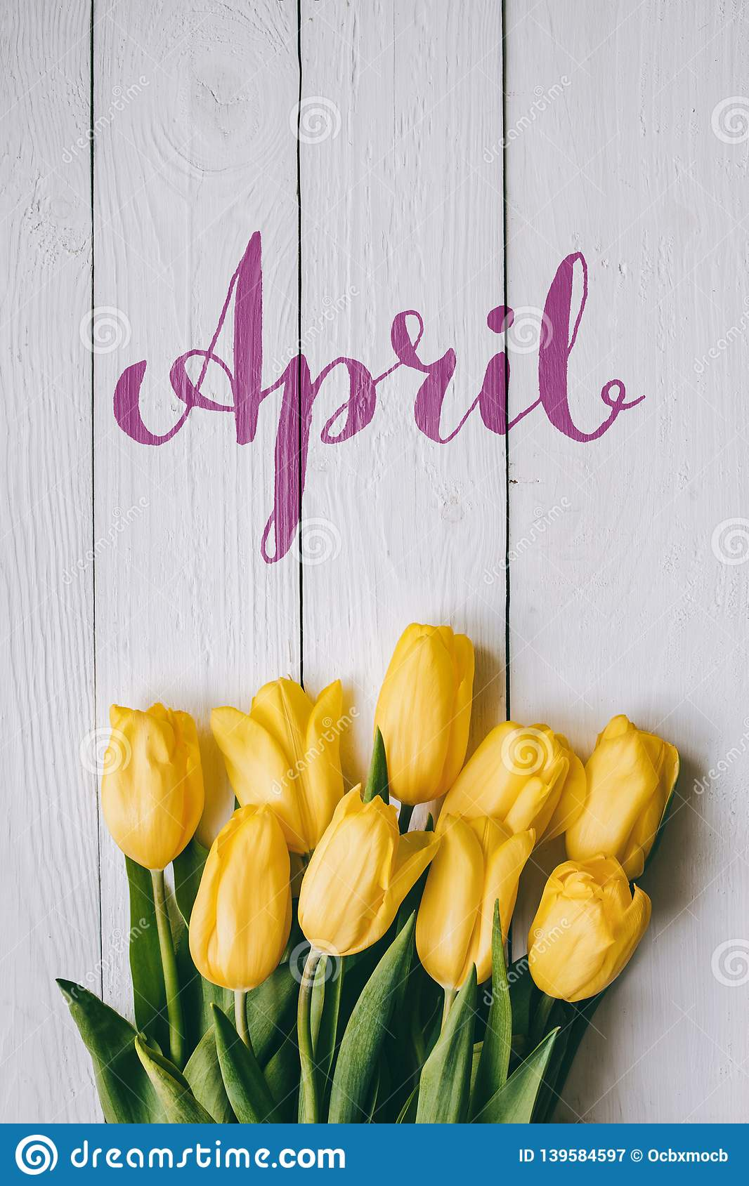 April hand lettering calligraphy. Yellow tulips bunch on white wooden planks rustic barn rural table background. Letters,