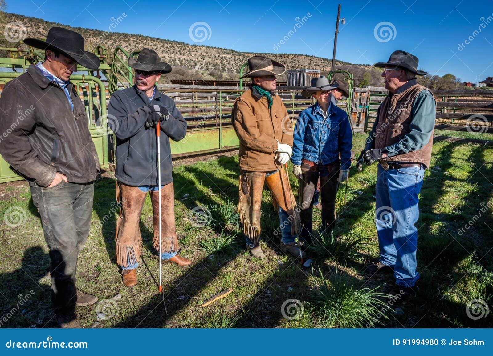 22 APRIL, 2017, RIDGWAY COLORADO: de boerderijeigenaar Vince Kotny spreekt aan Cowboys die vee op Honderdjarige Boerderij, Ridgwa