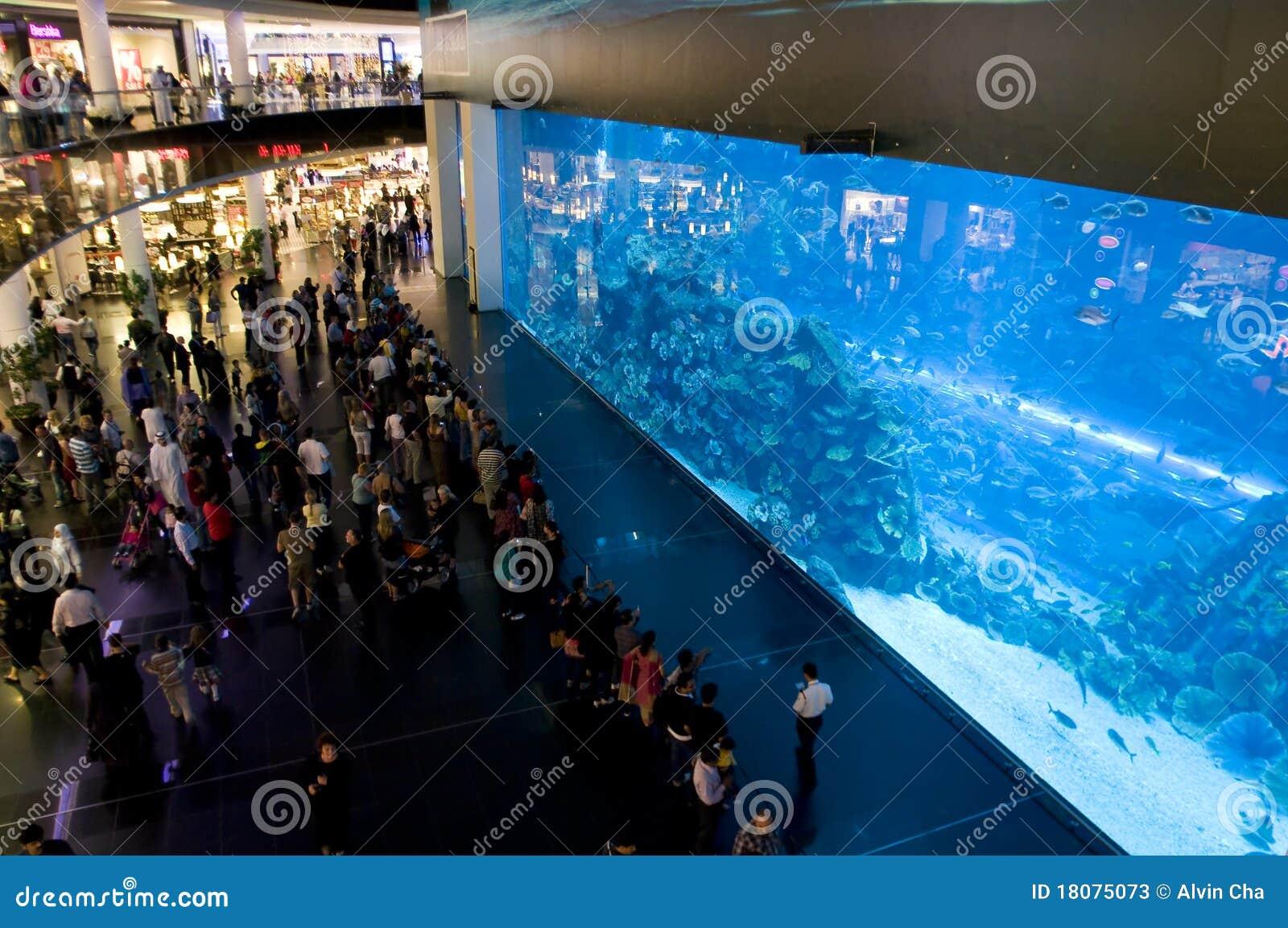 Aquário de Dubai na alameda de Dubai