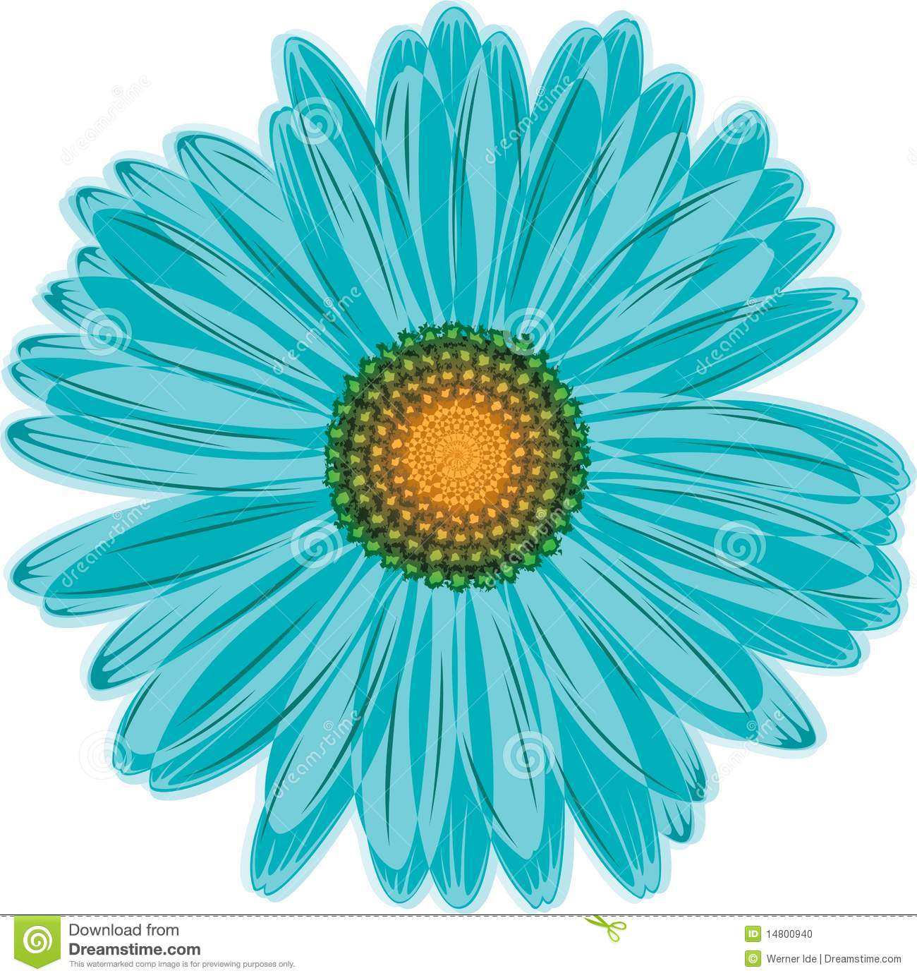 Aqua blue daisy flower stock vector illustration of daisy 14800940 aqua blue daisy flower izmirmasajfo