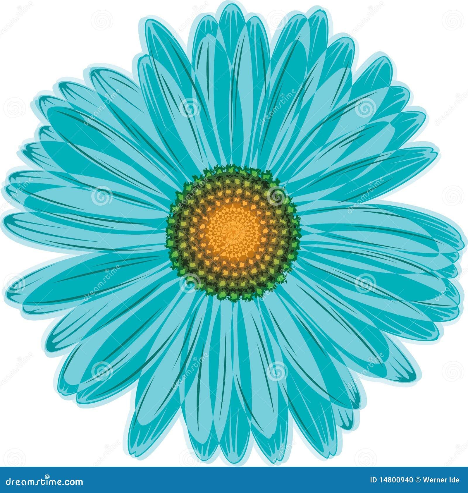 Aqua Blue Daisy Flower Stock Vector Illustration Of Daisy 14800940