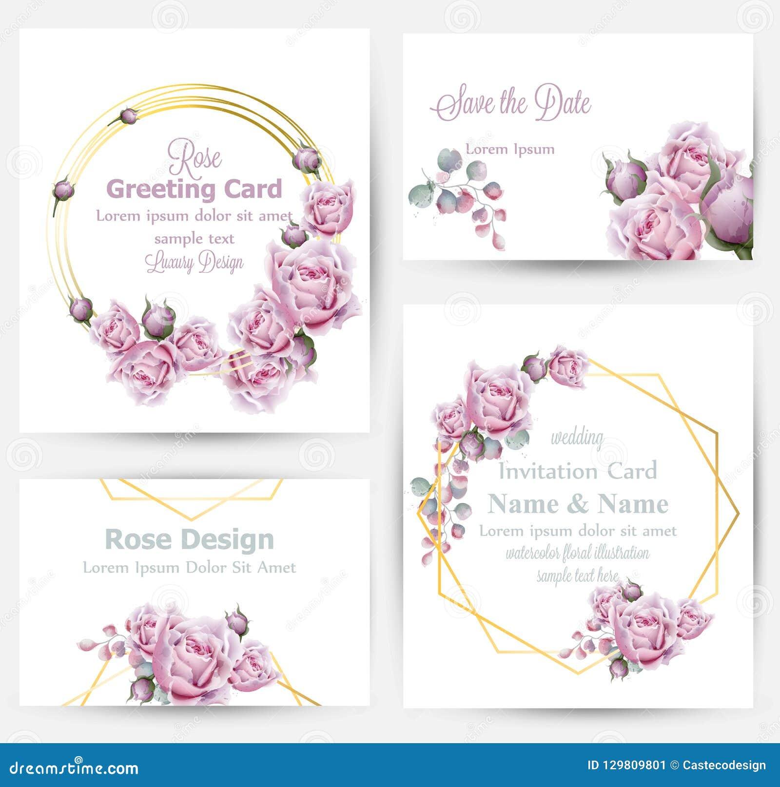 A aquarela aumentou vetor da coleção do grupo de cartões das flores Cumprimento do vintage ou cartão, convite do casamento, obrig