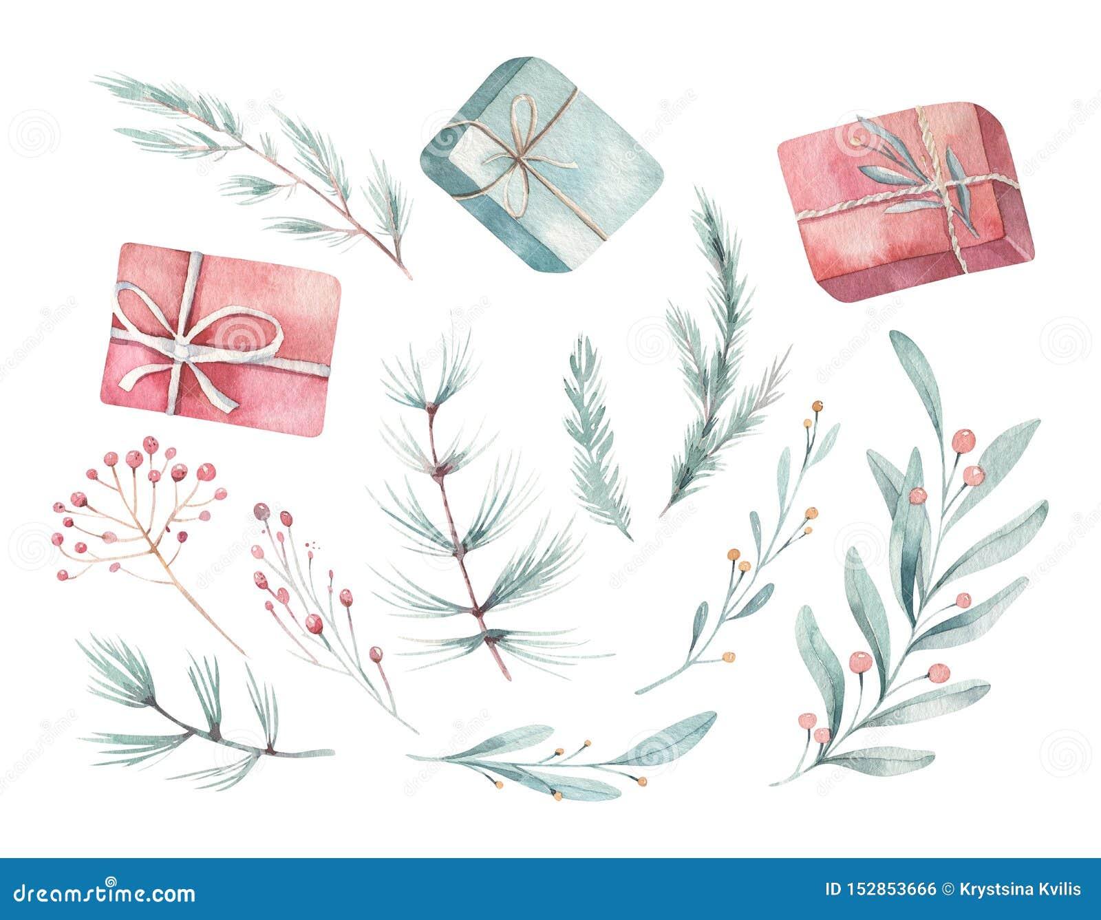 Aquarela do Feliz Natal ajustada com elementos florais Caixas de presente do ano novo feliz, flocos de neve, bagas e árvore de Na