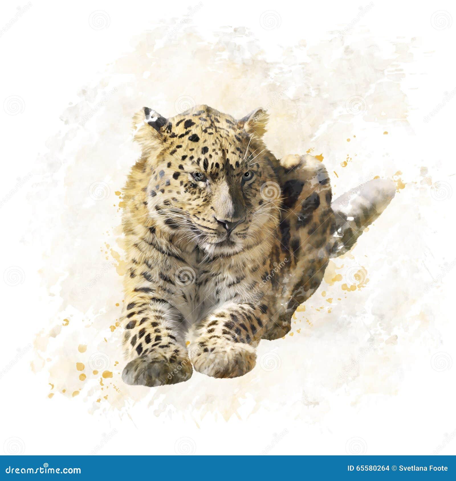 Aquarela do retrato do leopardo