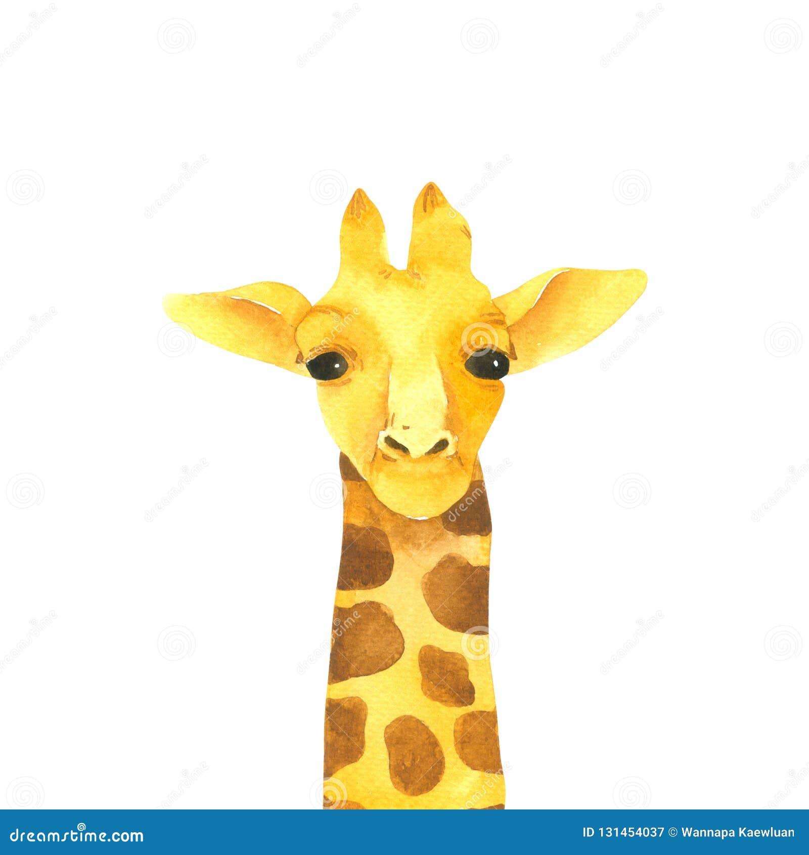 Aquarela Dos Desenhos Animados Do Girafa Isolada No Fundo Branco