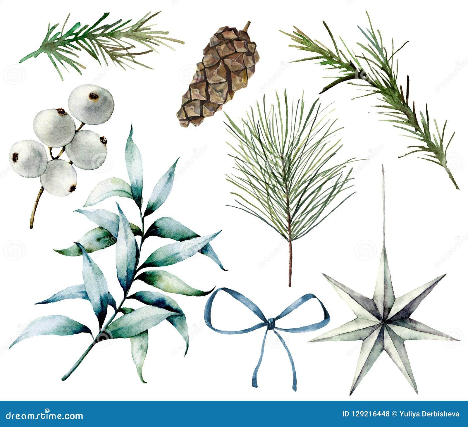 Aquarell-Weihnachtsanlagen und -dekor Handgemalte Tannenzweige, Eukalyptusblätter, weiße Beeren, Stern, Tannenzapfen, Bogen