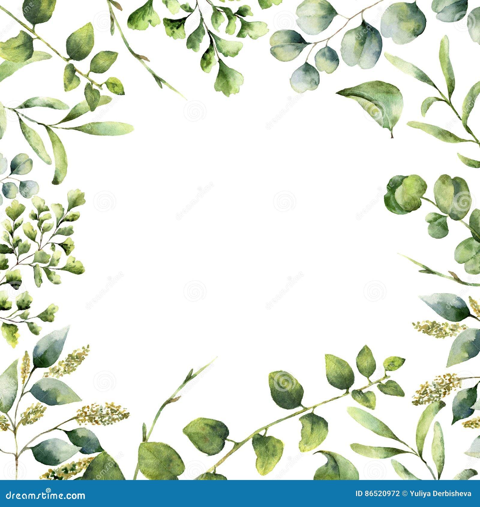 Aquarellblumenrahmen Handgemalte Betriebskarte mit den Eukalyptus-, Farn- und Frühlingsgrünniederlassungen lokalisiert auf Weiß