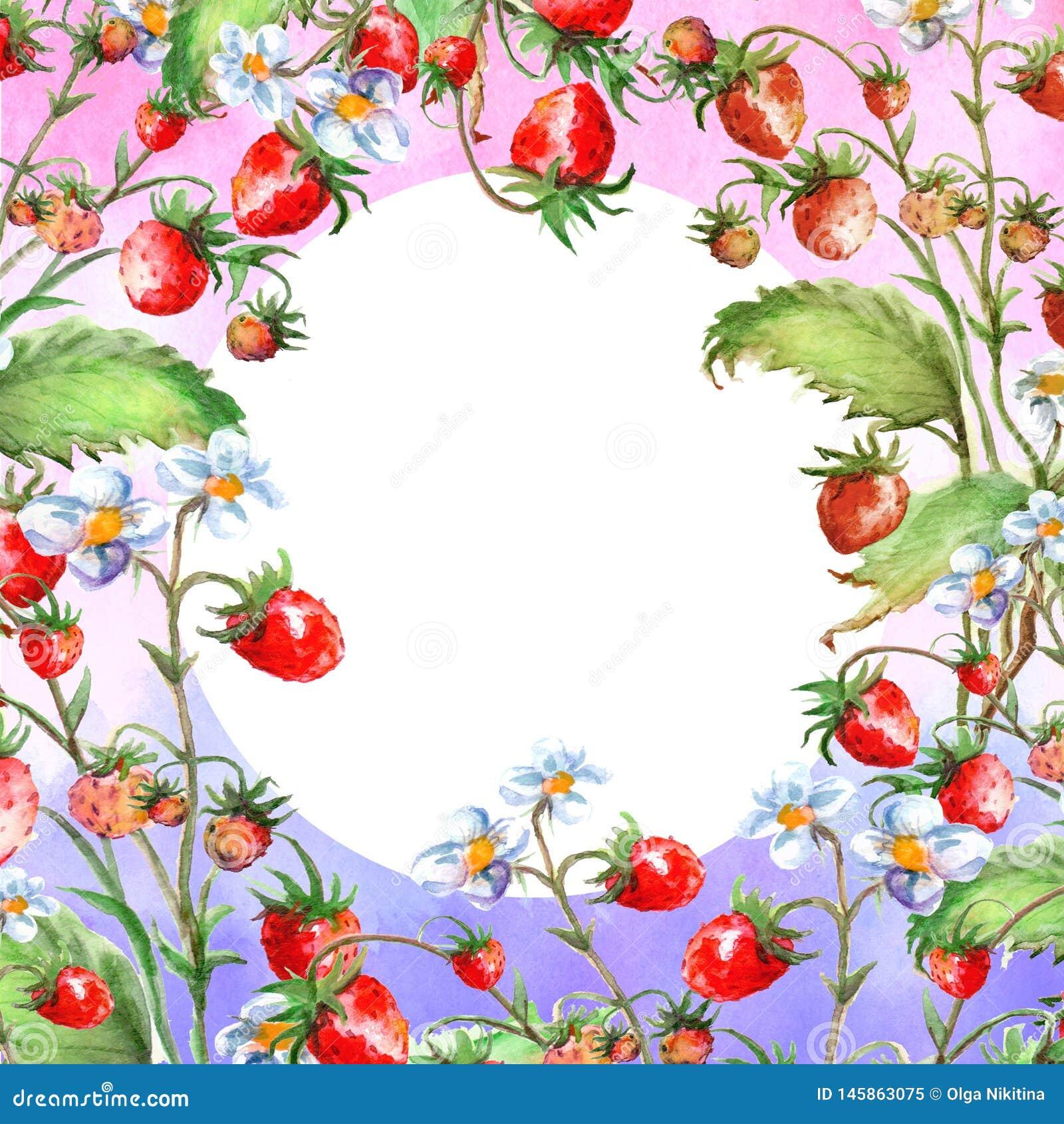Aquarellgru?karte, Einladung mit einer Betriebserdbeere Bl?hender Busch mit einer roten Beere und einer Blume