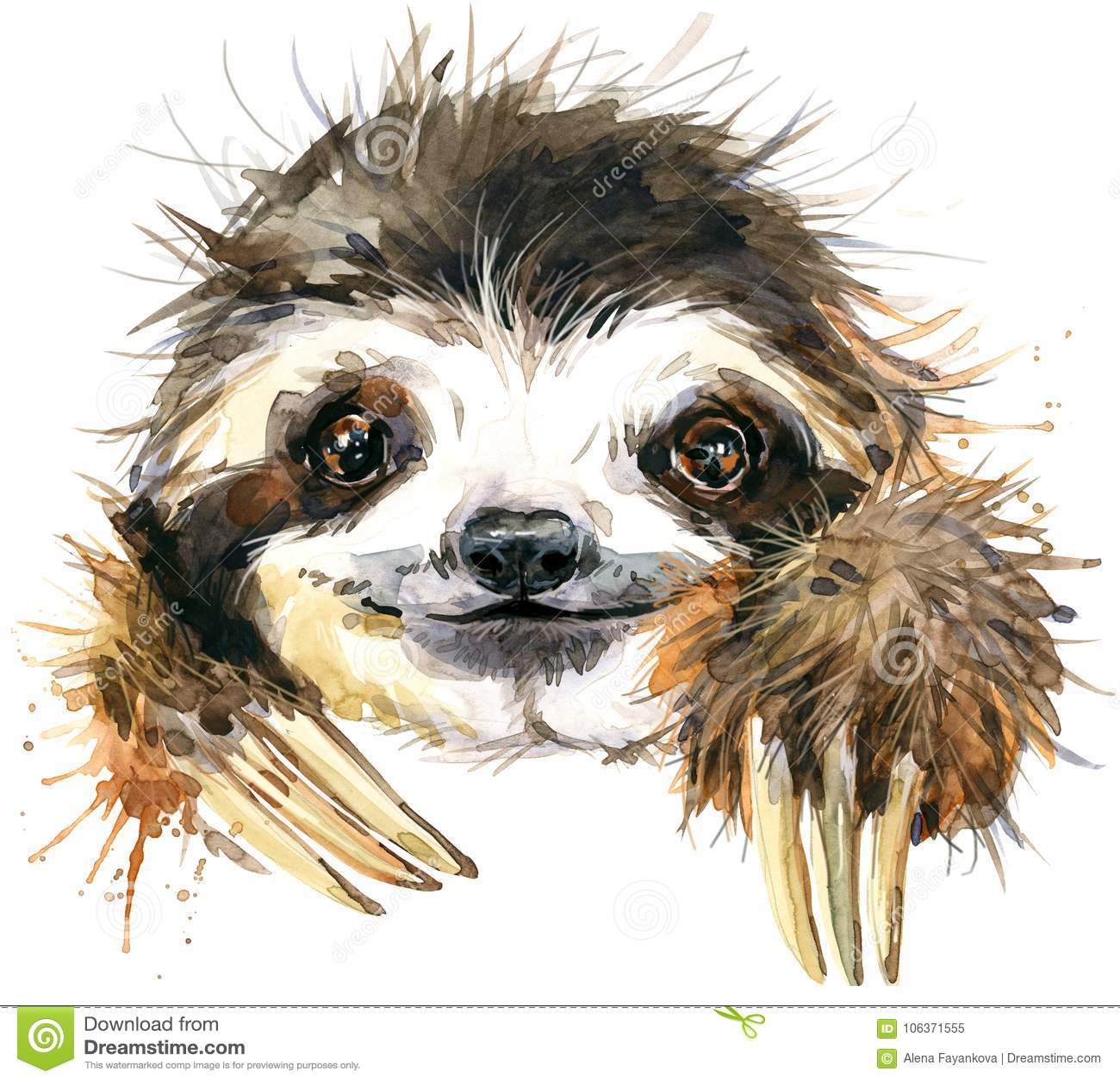 Aquarellträgheitsillustration tropisches Tier