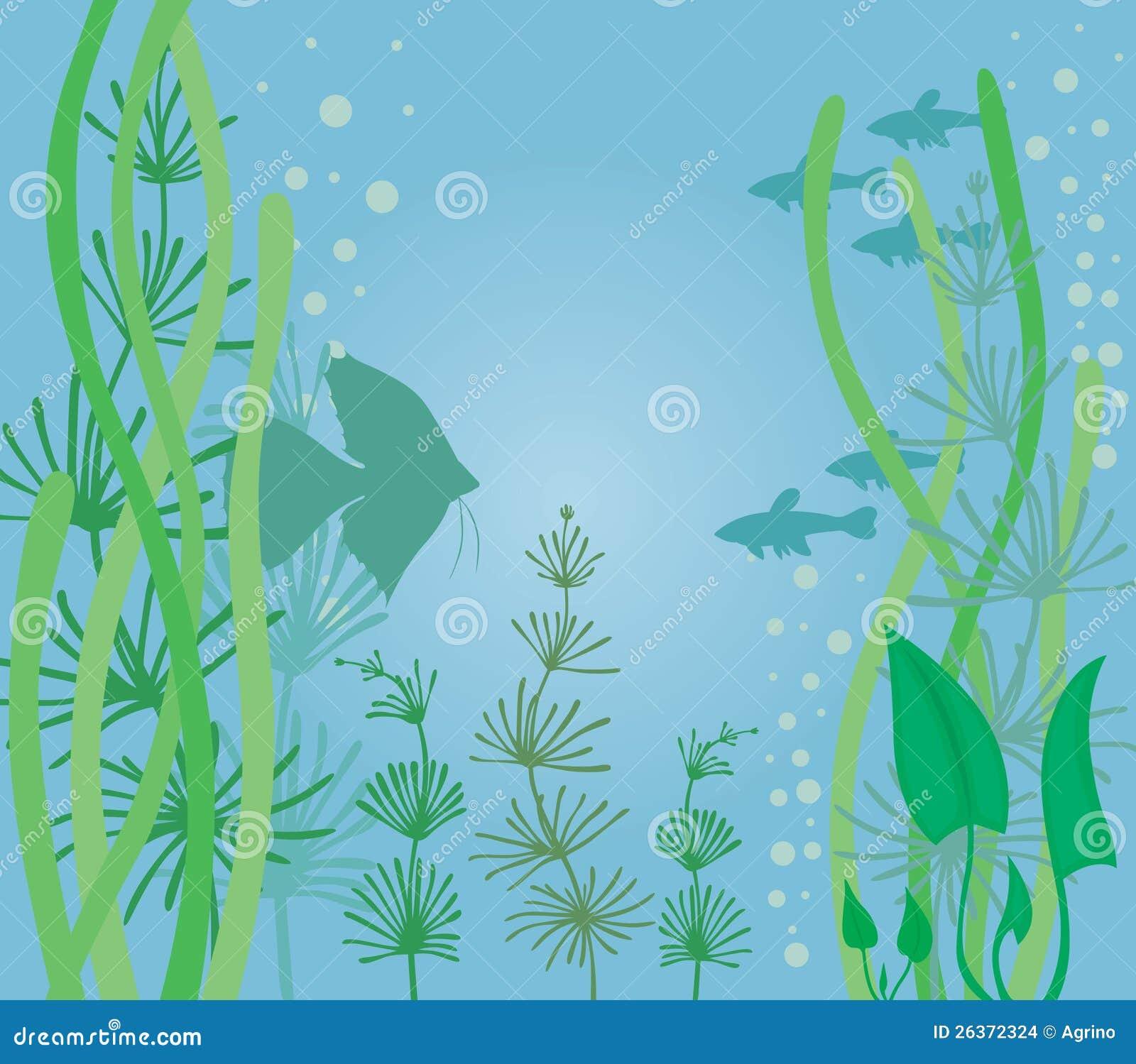 Aquarium avec des poissons images stock image 26372324 for Aquarium avec poisson