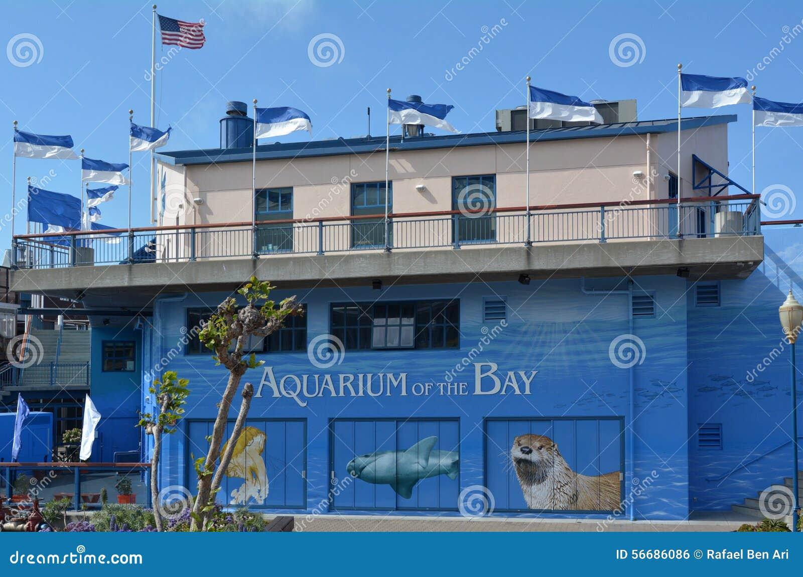Aquarium Of The Bay In San Francisco California