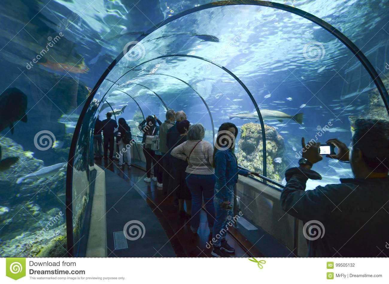 Aquarium de Barcelona, Spain