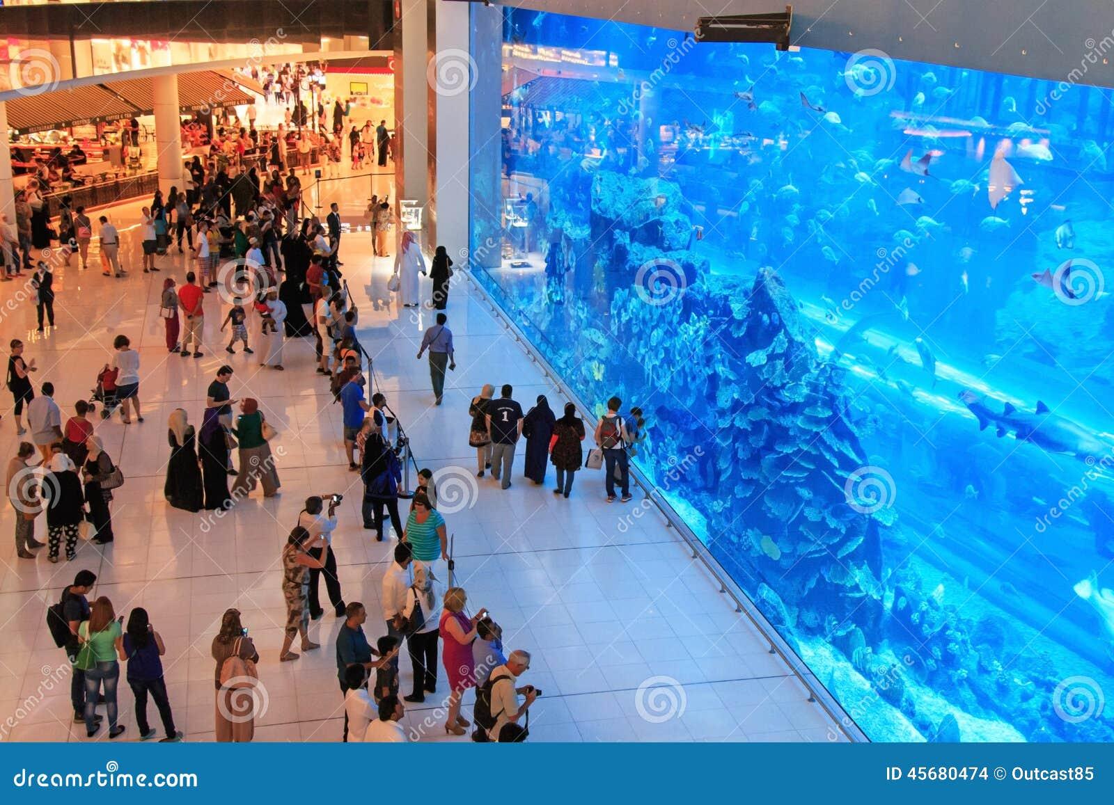 Aquarium in Dubai Mall, world s largest shopping mall
