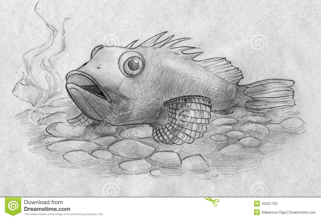 pencil sketch of an aquarium fish resting on the bottom of the tank ...
