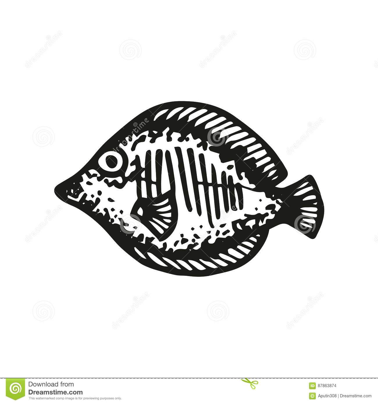Aquarium Fish Vector Sketch Stock Vector Illustration Of Isolated