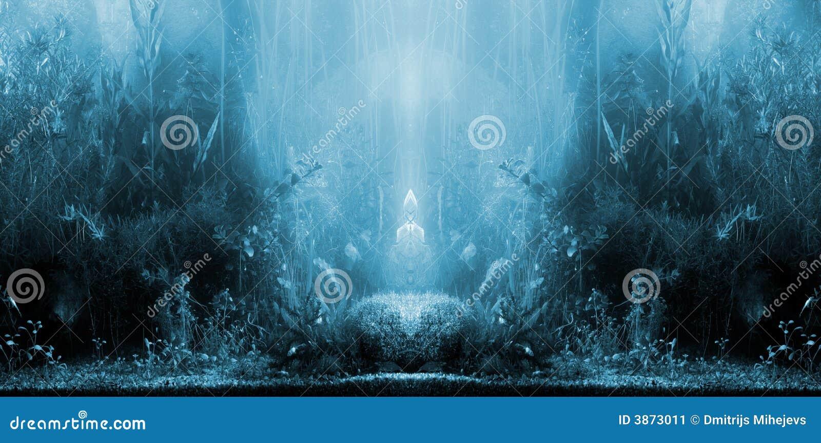 Aquarium landscape stock image image 3873011 Aquarium landscape