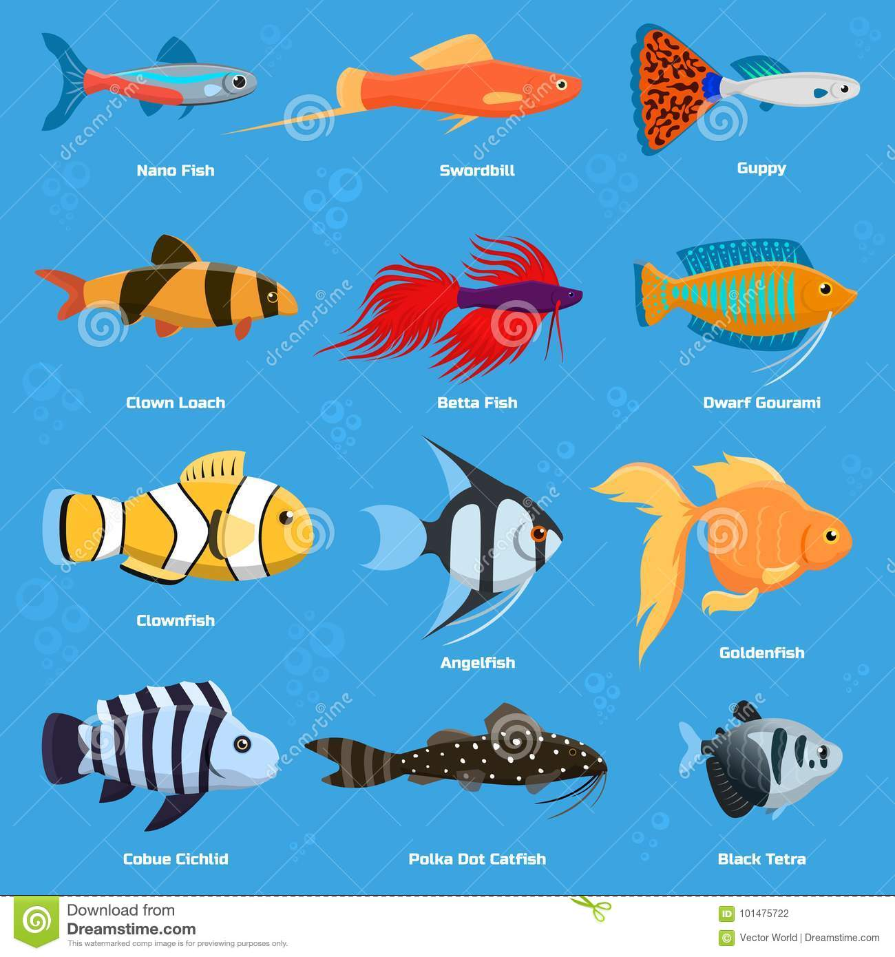 aquarium and ocean fish breeds underwater bowl tropical aquatic