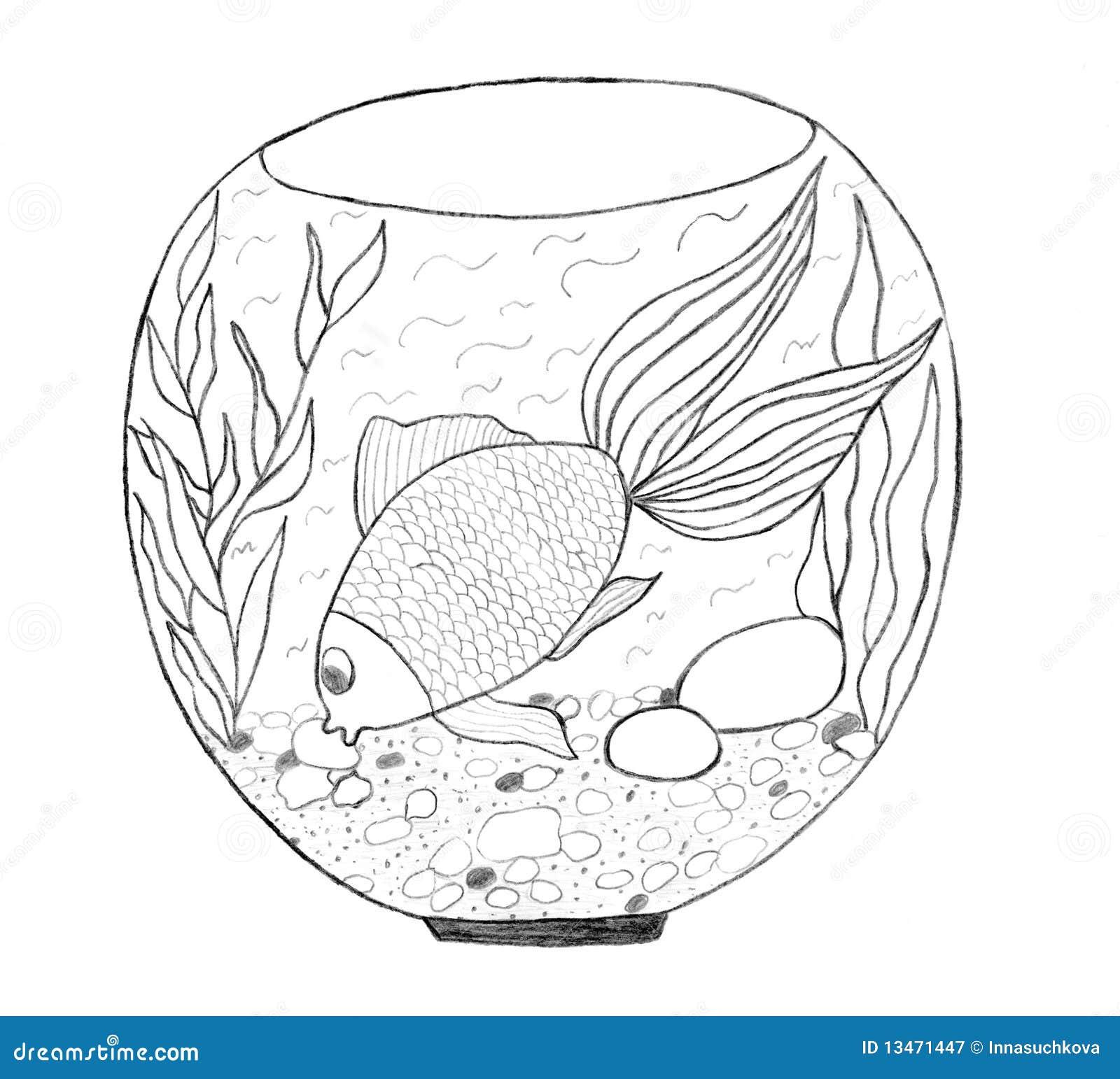 Aquarium Sketch Royalty Free Stock Photography